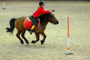 photographe_sport_poitiers_equitation_poney_game_02