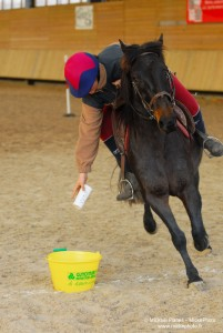photographe_sport_poitiers_equitation_poney_game_08