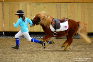 photographe_sport_poitiers_equitation_poney_game_13