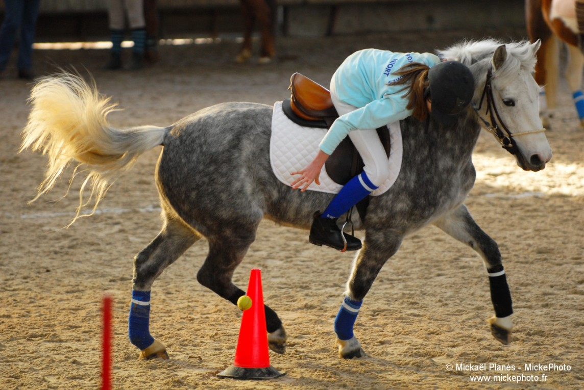 photographe_sport_poitiers_equitation_poney_game_15