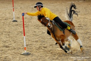 photographe_sport_poitiers_equitation_poney_game_16