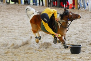 photographe_sport_poitiers_equitation_poney_game_17